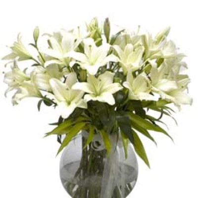 lily flowers, send lilies flowers to india, lilium flowers for, Beautiful flower