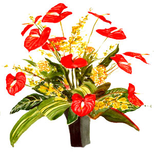 Anniversary Flowers to Jaipur