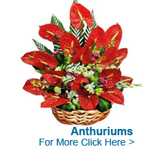 Online Florist India