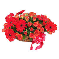 Online Flower Delivery in India : Red Gerbera Bouquet