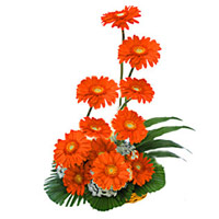 Flower Delivery in India : Red Gerbera Bouquet