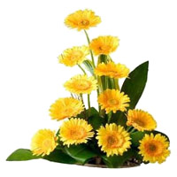 New Year Flower Delivery in India - Yellow Gerbera