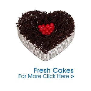 Fresh Cake to India