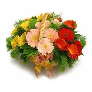 New Year Flowers to India