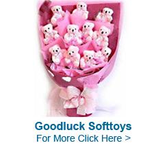 Good Luck Teddy Bear in India