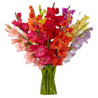 Same Day Flowers Delivery in Goa
