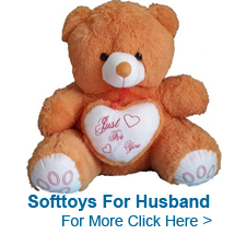 Soft Toys for Husband to India