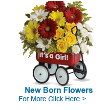 New Born Flowers to India