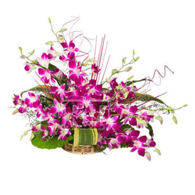 Same Day Orchid Flowers to India