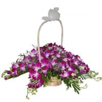 Flowers to India Online
