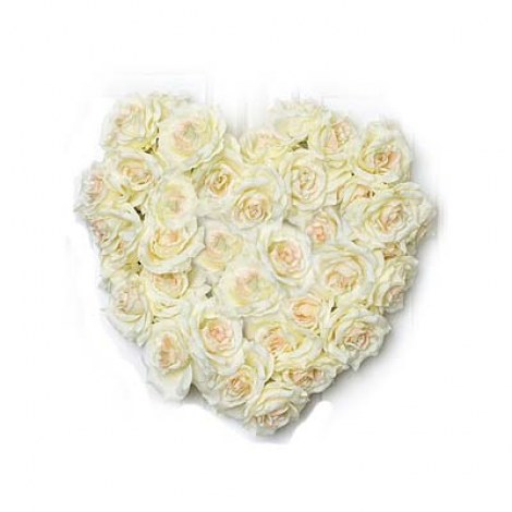 Online White Flowers to India